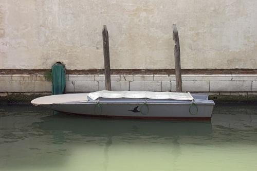 Barque au Canard