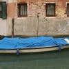 Barque Caigo